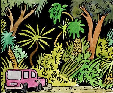 Jungle Parking Lot