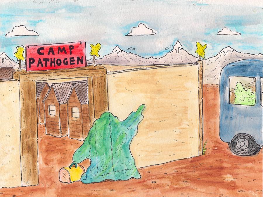 Camp Pathogen