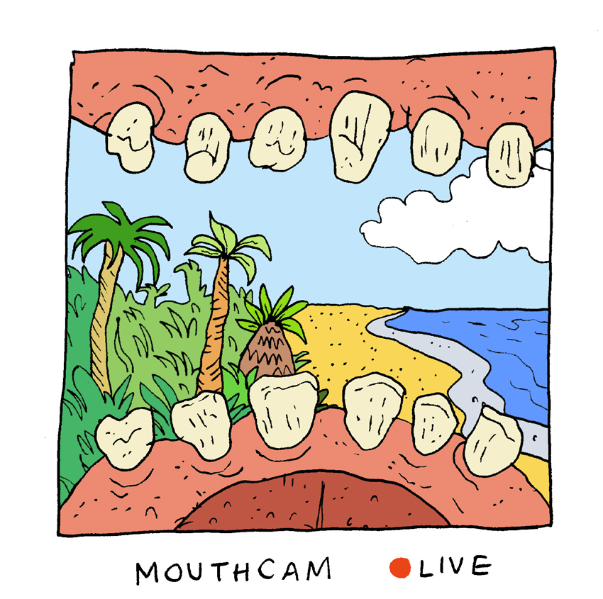 Mouthcam
