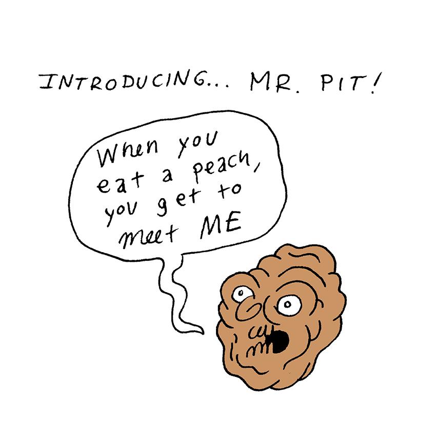 Mr Pit